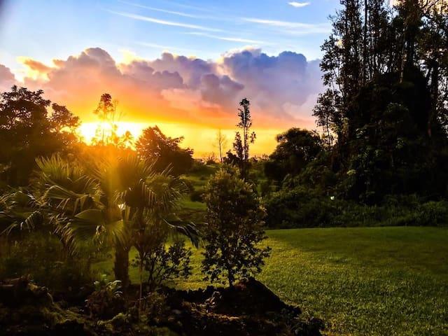 Aloha Jewel Guest House