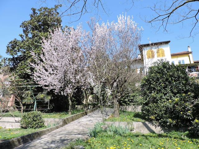 Casa di campagna - Azeglio - Bed & Breakfast