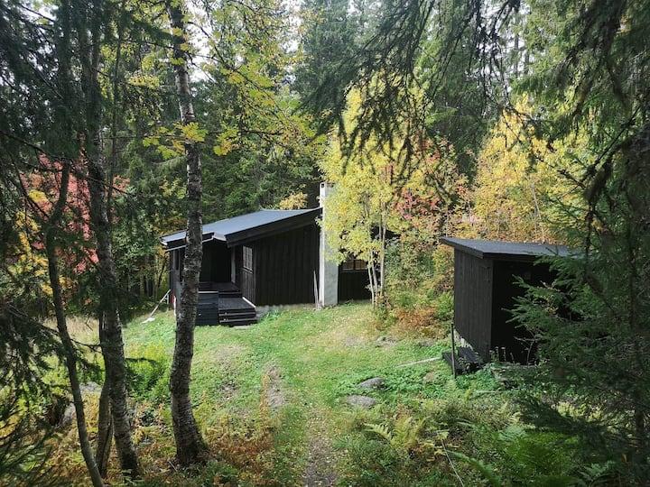 Koselig hytte med unik beliggenhet.