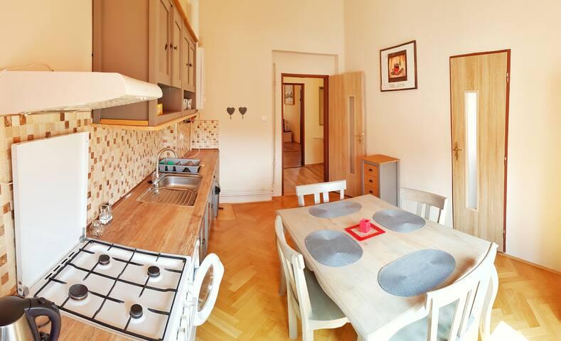 Teplice Apartment (Spa Area)