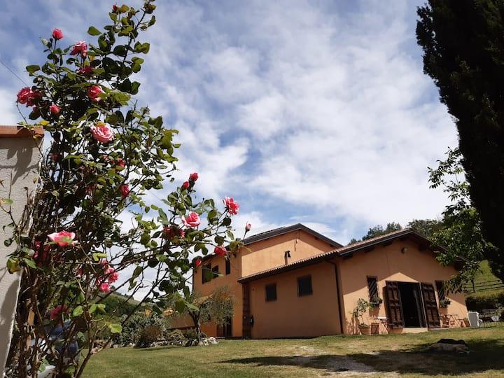 Casale CentOlivi - relax, natura e buon cibo