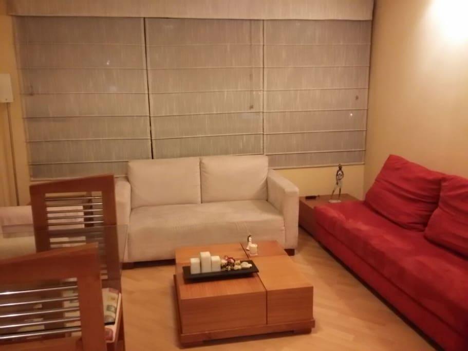 Sala con un sofá cama