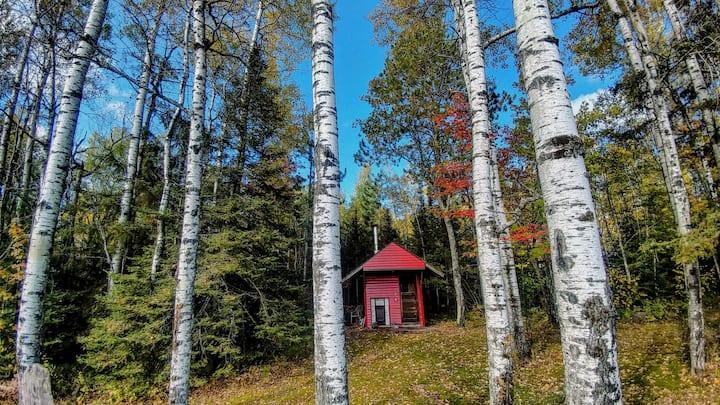 ❤ Sauna, Netflix, 90+Mbps WiFi, Campfire, Private