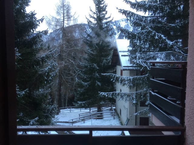Tipica casa di montagna trentina - Folgarida