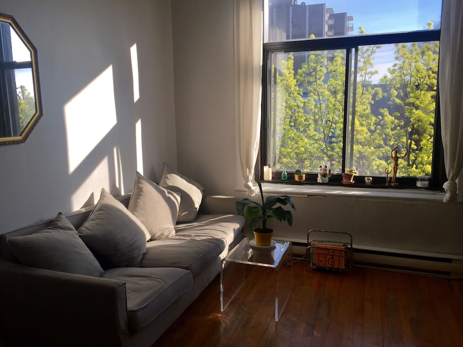 Living space overview at sunset