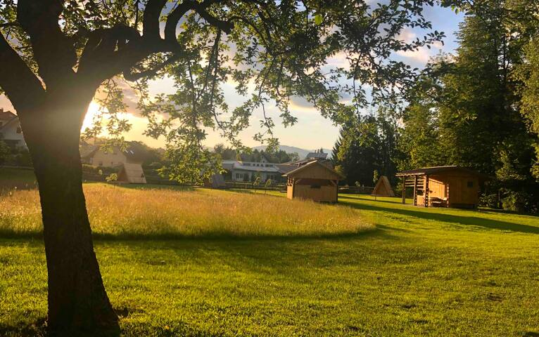 Natura Camp Gea - Wooden Caming Hut 3
