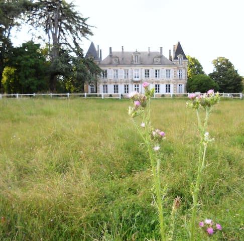 le logis du château Coudavid - Vienne