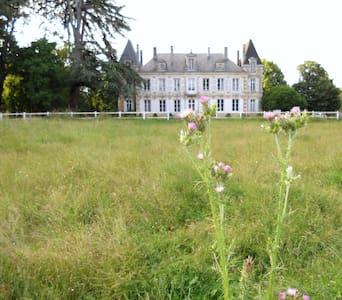 le logis du château Coudavid - Вьенн - Замок
