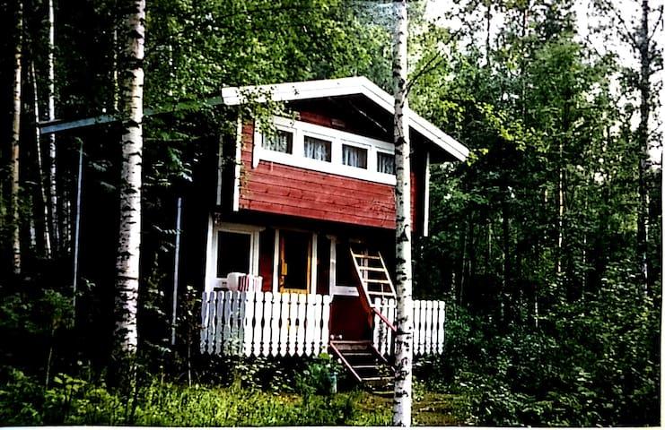Luhtimökki - Log cottage