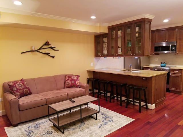 Modern One Bedroom Apartment in Historic Old Town - Alexandria - Byt