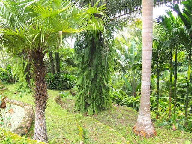 Villa des Palmes in Kep - Kep Beach - Hus