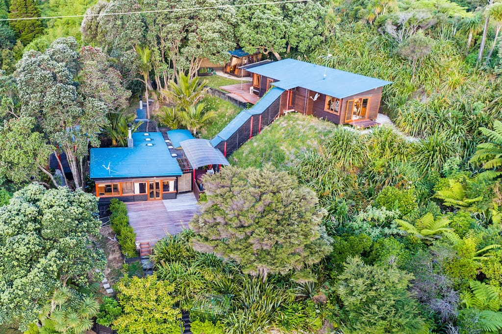 The architectural house is surrounded by nature