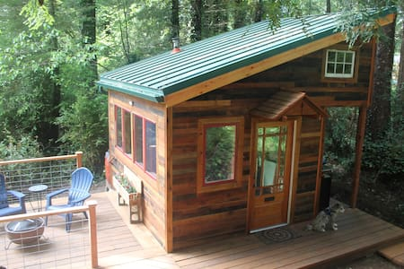The Tiny House in the Redwoods