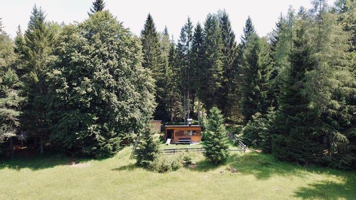 Kleine gemütliche Almhütte im Wald an der Loipe