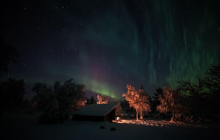 Arctic Sky Lapland