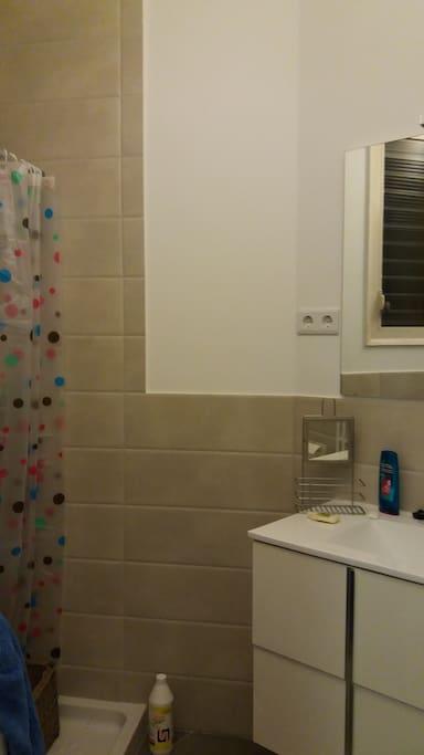 salle de bain avec douche et toilettes, plus lavabo et rangements (tout neuf)
