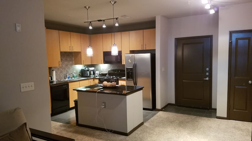 Modern fully equipped apartment in great location - Houston