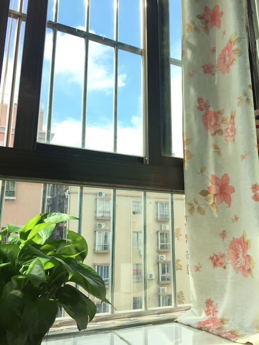 卧室飘窗 sunny day