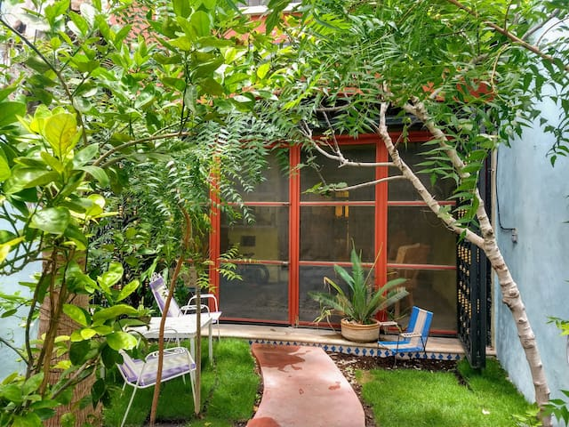 Leafy Neem trees keep mosquitos at a minimum for maximum enjoyment of our shady outdoor space. Or enjoy the backyard from inside the screened terrace instead.