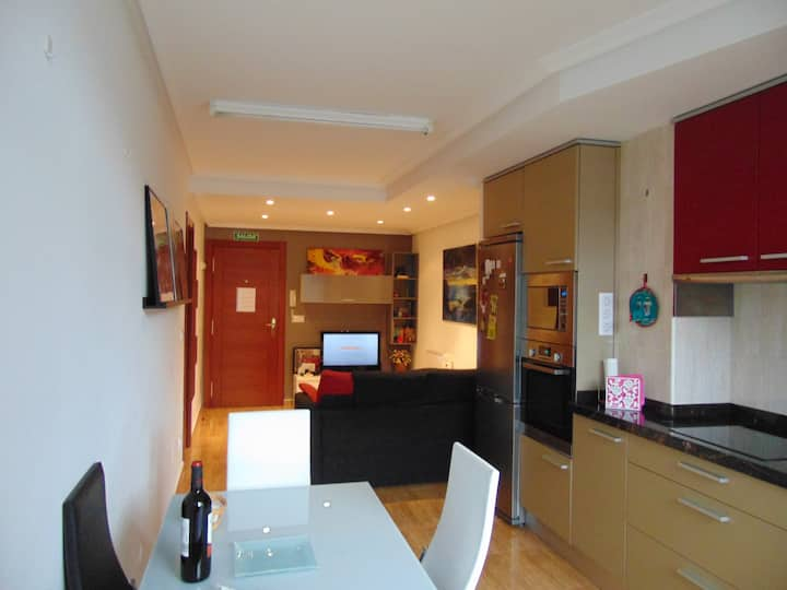 Modern flat in the heart of Potes.