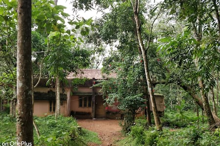 Pathanamthitta Home with a View