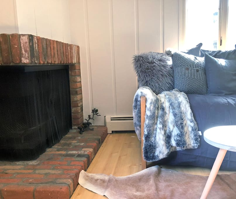 Working fireplace and super cozy comfy daybed