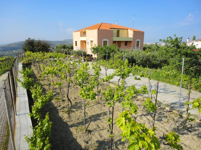 Papoura country house with magnificent view - Patsides - Huis