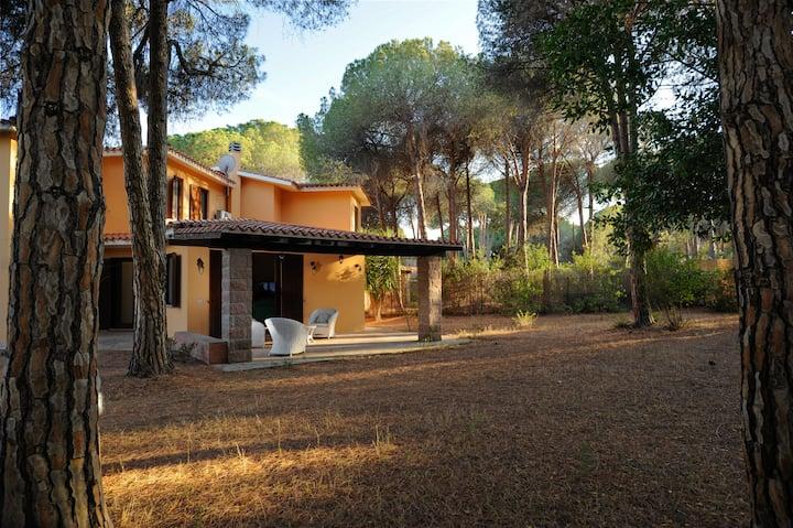 Villa I Pini 2 - Luxury Holidays in Sardinia