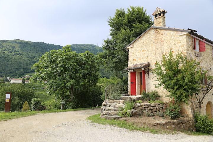 Rustic Cottage, Panorama, Wine Country, Veneto