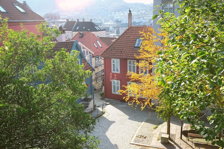 Bright Nordnes apartment, 10 mins from city center