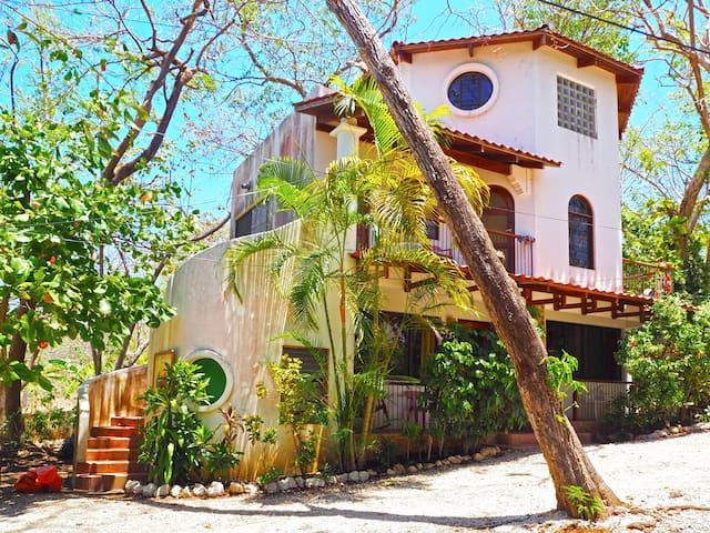 "Las Tortugas Apts ""Octopus #1"" - Garden & Forest"