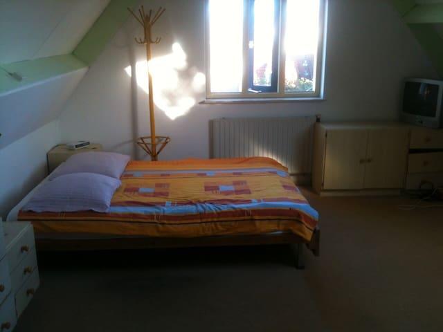 cozy room for everyone - Den Burg - Casa