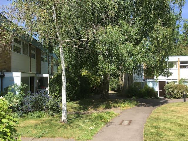 Big BR to let in nice house w. garden, Blackheath
