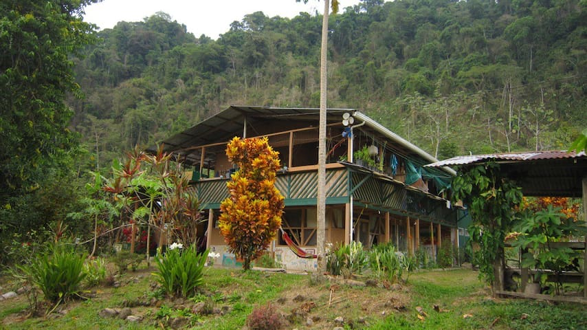 Three Seeds Farm House - Río Nuevo