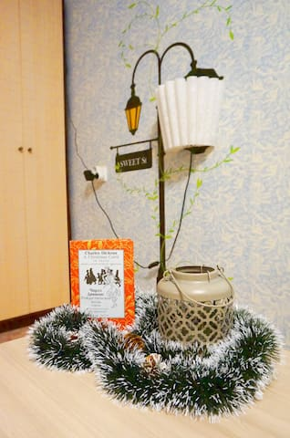 "Cozy ""Owl's nest"" apartment in Petrozavodsk"