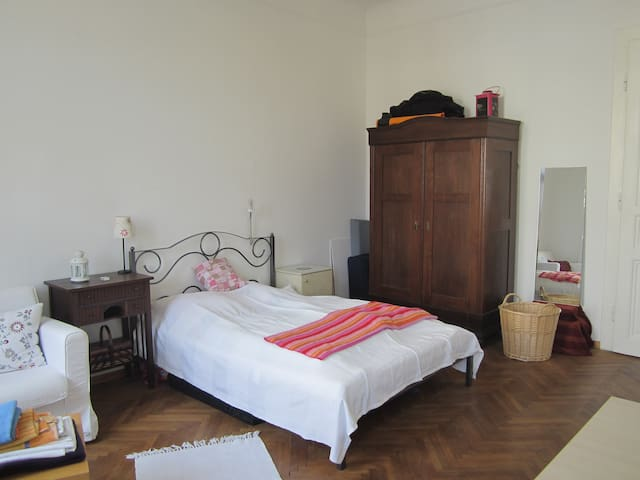 Charming room (25sqm) in big flat, central locatio - Wien - Apartment