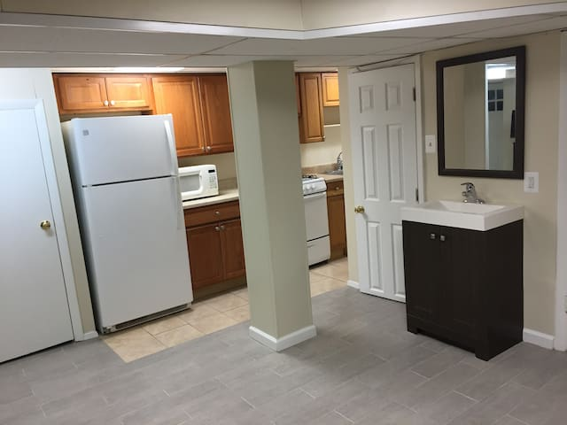 Lrg 1 Bed English Bsmt Aprt in Row Home Near Metro