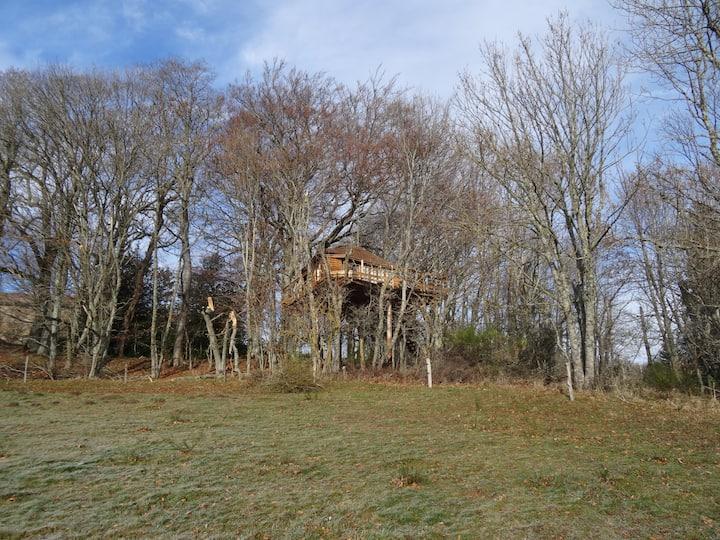 La cabane des fayards