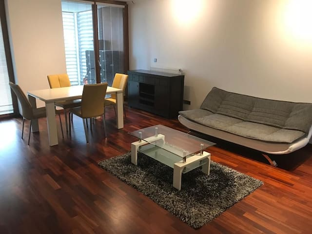 Furnished 2 bedroom apartment in Kirchberg