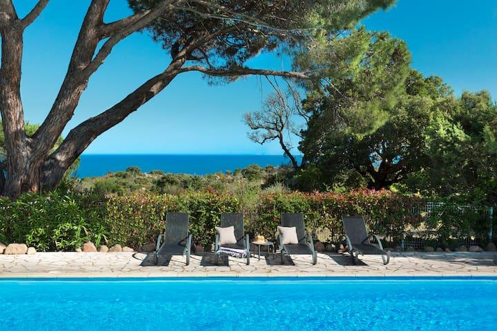 Studio avec piscine à Palombaggia
