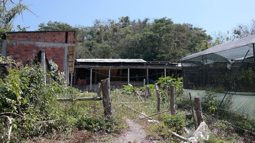 El Guadual