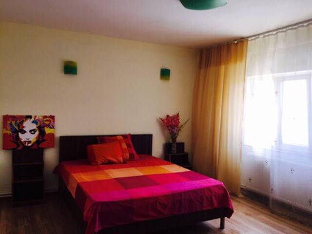 Charming and spacious room in villa - Mangalia - Huis