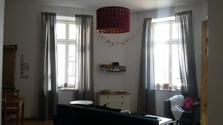 Apartment walking distance to city center and park