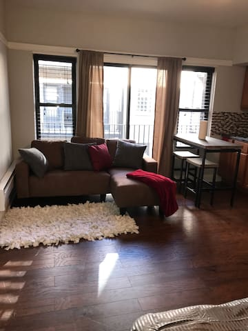Amazing loft style studio W/balcony - Chicago - Loft