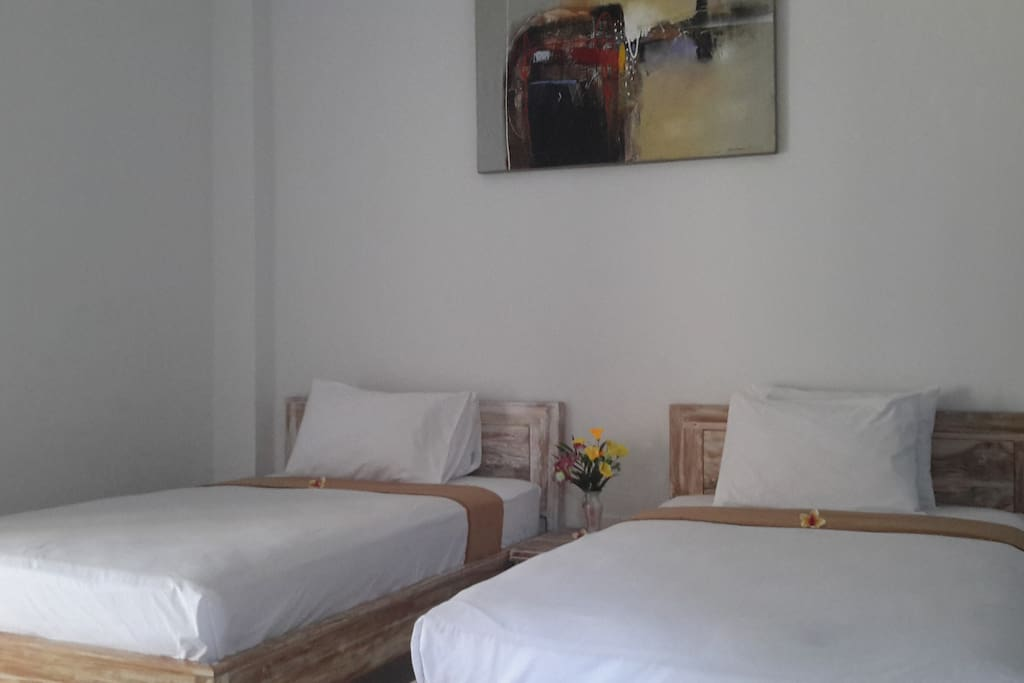 Deluxe twn bed Room