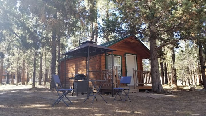 Log Cabin Guest House on 2+ acres