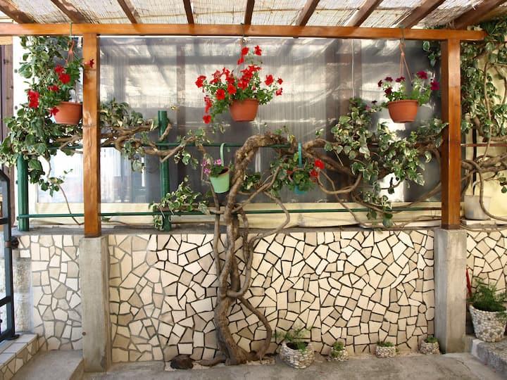 Lucija - Charming Dalmatian Seaside Room