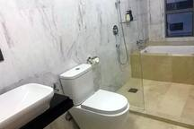 toilet setup with bath tub