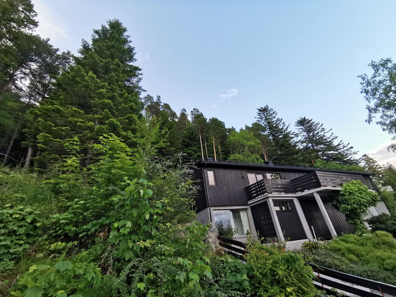 House with the woods and mount Aksla right behind it