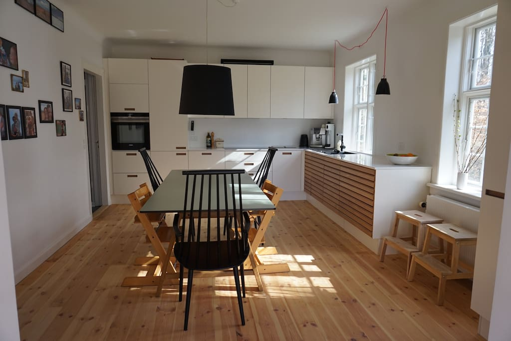 Helt nyt køkken fra december 2016. Brand new kitchen from december 2016. View to the forest